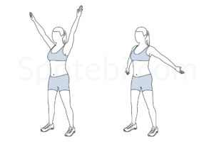 Big arm circles exercise guide with instructions, demonstration, calories burned and muscles worked. Learn proper form, discover all health benefits and choose a workout. https://www.spotebi.com/exercise-guide/big-arm-circles/