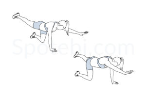 Bird dogs exercise guide with instructions, demonstration, calories burned and muscles worked. Learn proper form, discover all health benefits and choose a workout. https://www.spotebi.com/exercise-guide/bird-dogs/