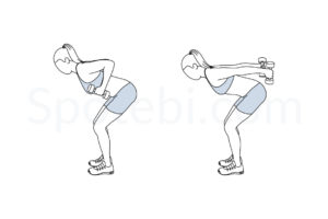 Dumbbell triceps kickback exercise guide with instructions, demonstration, calories burned and muscles worked. Learn proper form, discover all health benefits and choose a workout. https://www.spotebi.com/exercise-guide/dumbbell-triceps-kickback/