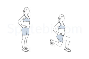 Lunges exercise guide with instructions, demonstration, calories burned and muscles worked. Learn proper form, discover all health benefits and choose a workout. https://www.spotebi.com/exercise-guide/lunges/