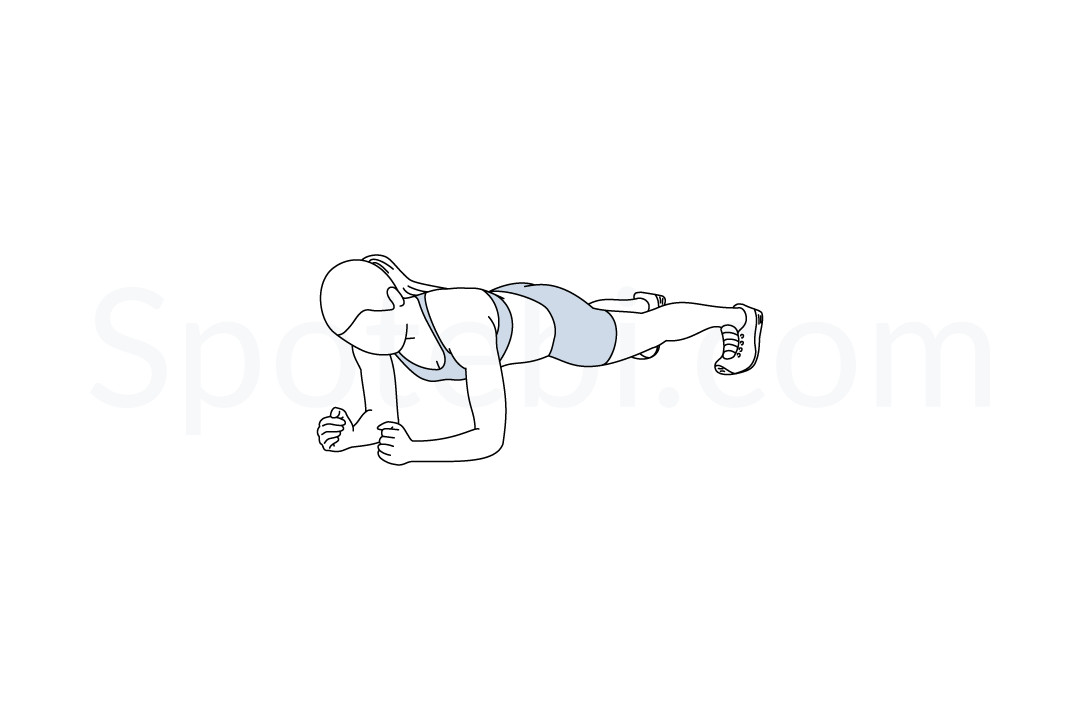 Plank exercise guide with instructions, demonstration, calories burned and muscles worked. Learn proper form, discover all health benefits and choose a workout. https://www.spotebi.com/exercise-guide/plank/