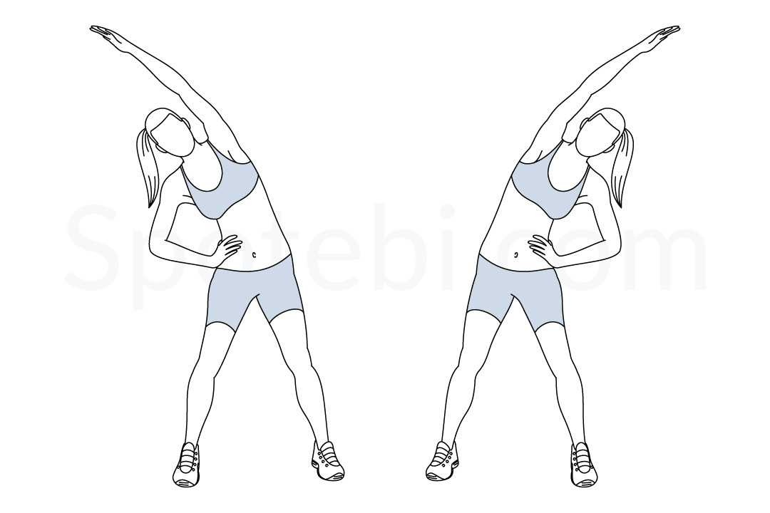 Obliques Stretch | Illustrated Exercise Guide