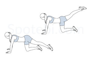 Back leg lifts exercise guide with instructions, demonstration, calories burned and muscles worked. Learn proper form, discover all health benefits and choose a workout. https://www.spotebi.com/exercise-guide/back-leg-lifts/