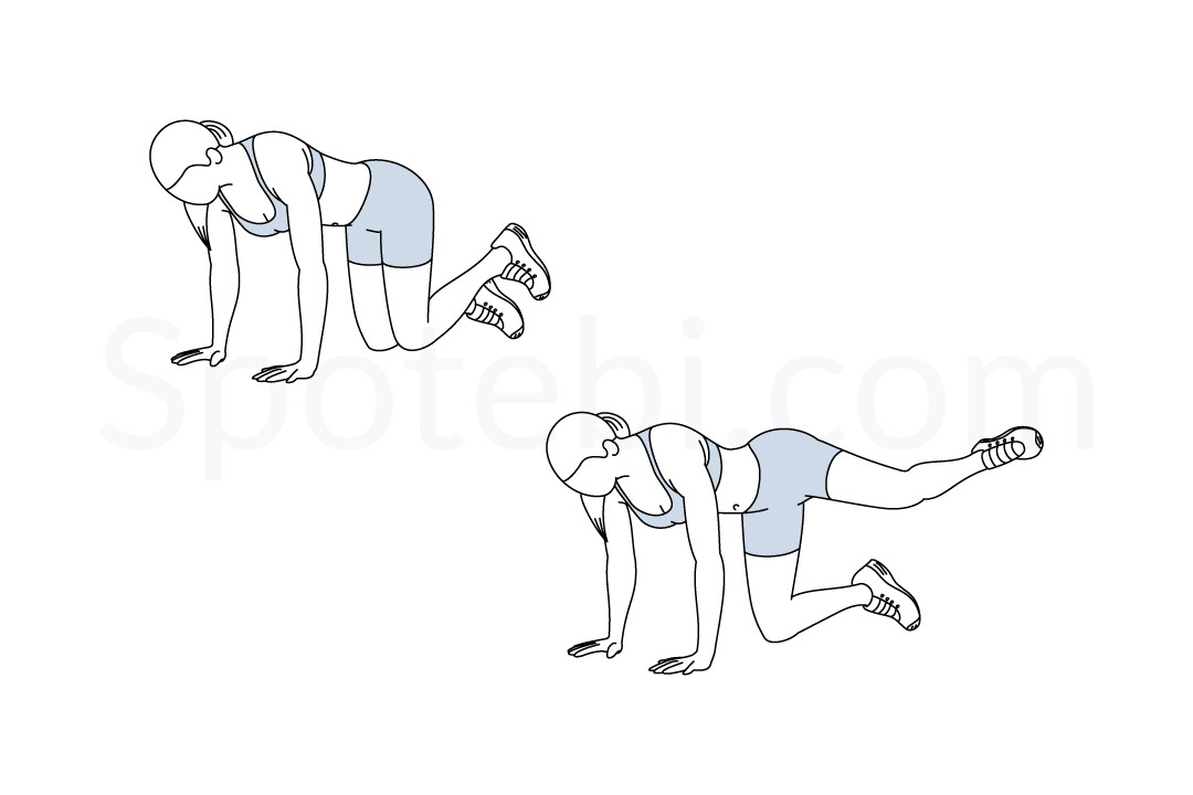 Fire Hydrant | Illustrated Exercise Guide