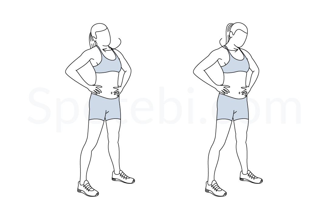 Neck Rolls Illustrated Exercise Guide