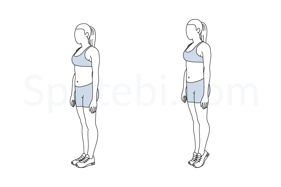 Calf raises exercise guide with instructions, demonstration, calories burned and muscles worked. Learn proper form, discover all health benefits and choose a workout. https://www.spotebi.com/exercise-guide/calf-raises/