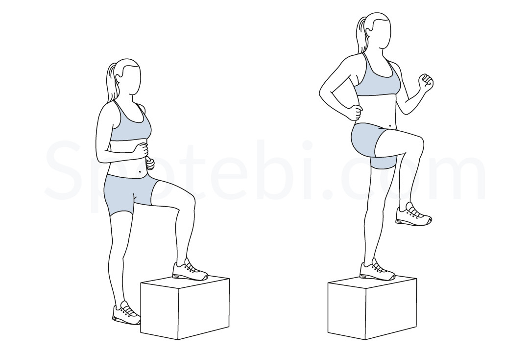 Step Up With Knee Raise | Illustrated Exercise Guide