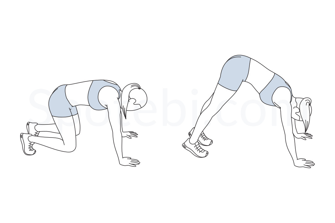 Bear squat exercise guide with instructions, demonstration, calories burned and muscles worked. Learn proper form, discover all health benefits and choose a workout. https://www.spotebi.com/exercise-guide/bear-squat/