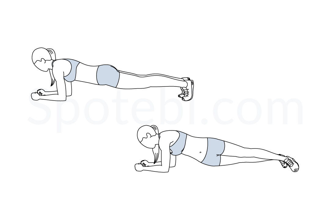 Plank Hip Dips | Illustrated Exercise Guide
