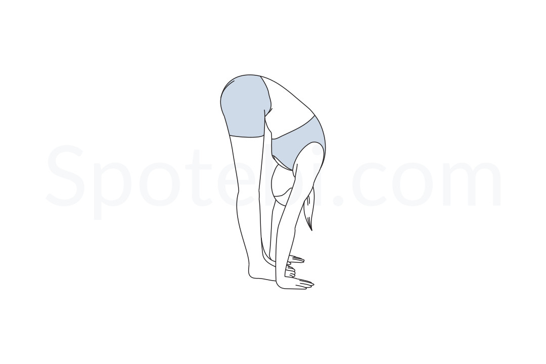 Standing Forward Bend Pose Uttanasana