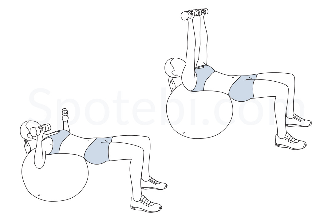 Stability ball chest press exercise guide with instructions, demonstration, calories burned and muscles worked. Learn proper form, discover all health benefits and choose a workout. https://www.spotebi.com/exercise-guide/stability-ball-chest-press/