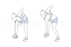 Bow and arrow squat pull exercise guide with instructions, demonstration, calories burned and muscles worked. Learn proper form, discover all health benefits and choose a workout. https://www.spotebi.com/exercise-guide/bow-and-arrow-squat-pull/