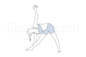 Extended triangle pose (Utthita Trikonasana) instructions, illustration and mindfulness practice. Learn about preparatory, complementary and follow-up poses, and discover all health benefits. https://www.spotebi.com/exercise-guide/utthita-trikonasana/