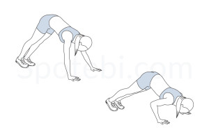 Pike push up exercise guide with instructions, demonstration, calories burned and muscles worked. Learn proper form, discover all health benefits and choose a workout. https://www.spotebi.com/exercise-guide/pike-push-up/