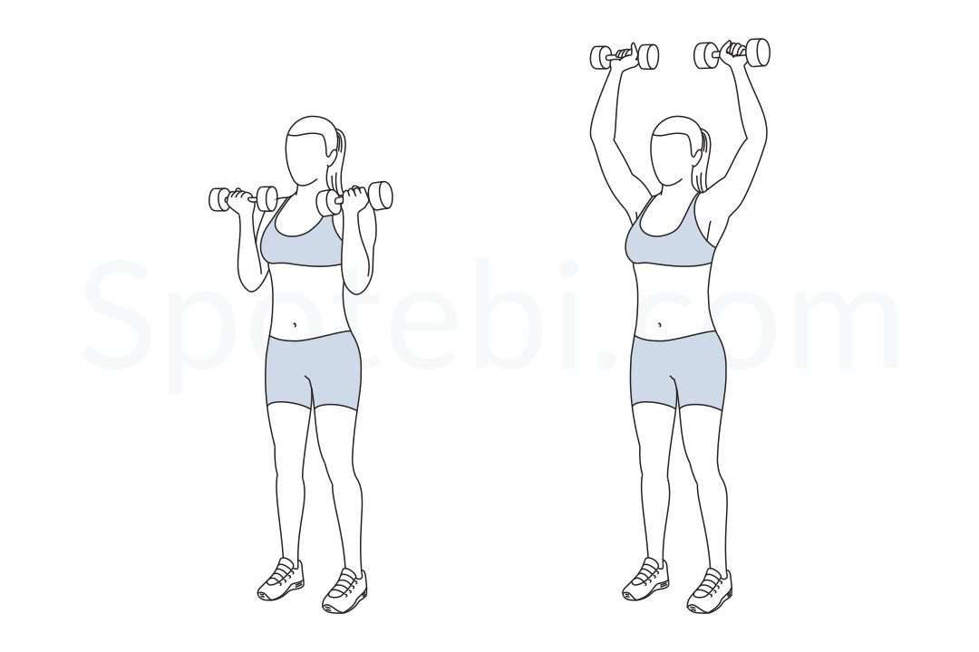 Shoulder Press Diagram 280946 Follow4morefo