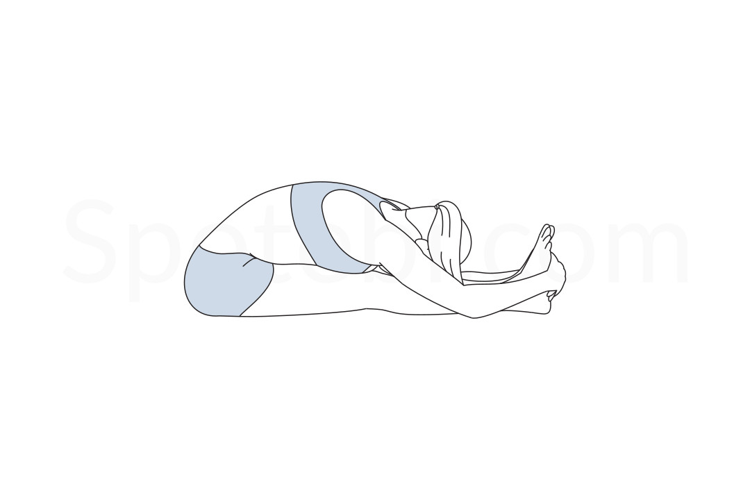Seated forward bend pose (Paschimottanasana) instructions, illustration and mindfulness practice. Learn about preparatory, complementary and follow-up poses, and discover all health benefits. https://www.spotebi.com/exercise-guide/seated-forward-bend-pose/