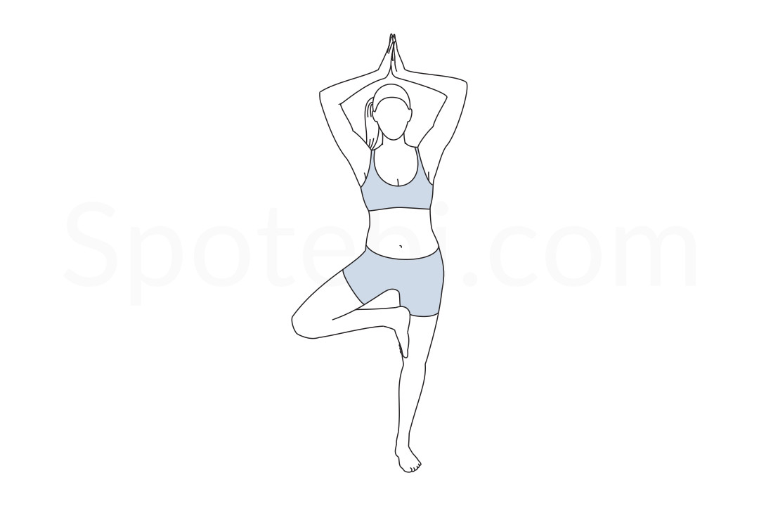 Tree pose (Vrksasana) instructions, illustration and mindfulness practice. Learn about preparatory, complementary and follow-up poses, and discover all health benefits. https://www.spotebi.com/exercise-guide/tree-pose/