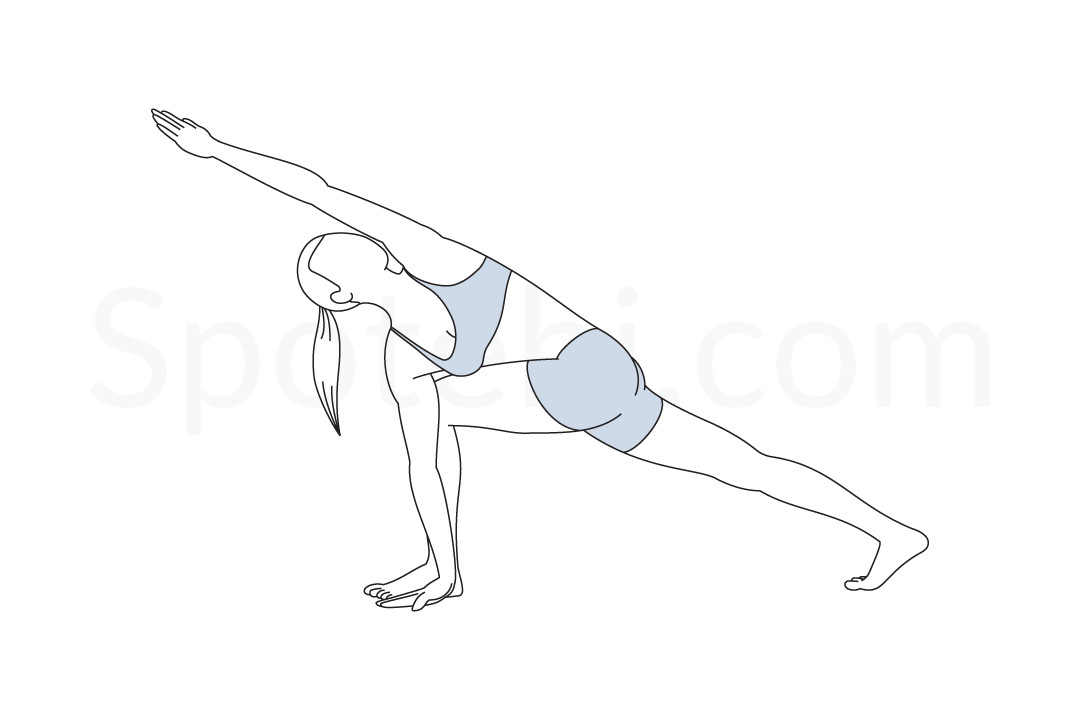 Revolved side angle pose (Parivrtta Parsvakonasana) instructions, illustration, and mindfulness practice. Learn about preparatory, complementary and follow-up poses, and discover all health benefits. https://www.spotebi.com/exercise-guide/revolved-side-angle-pose/