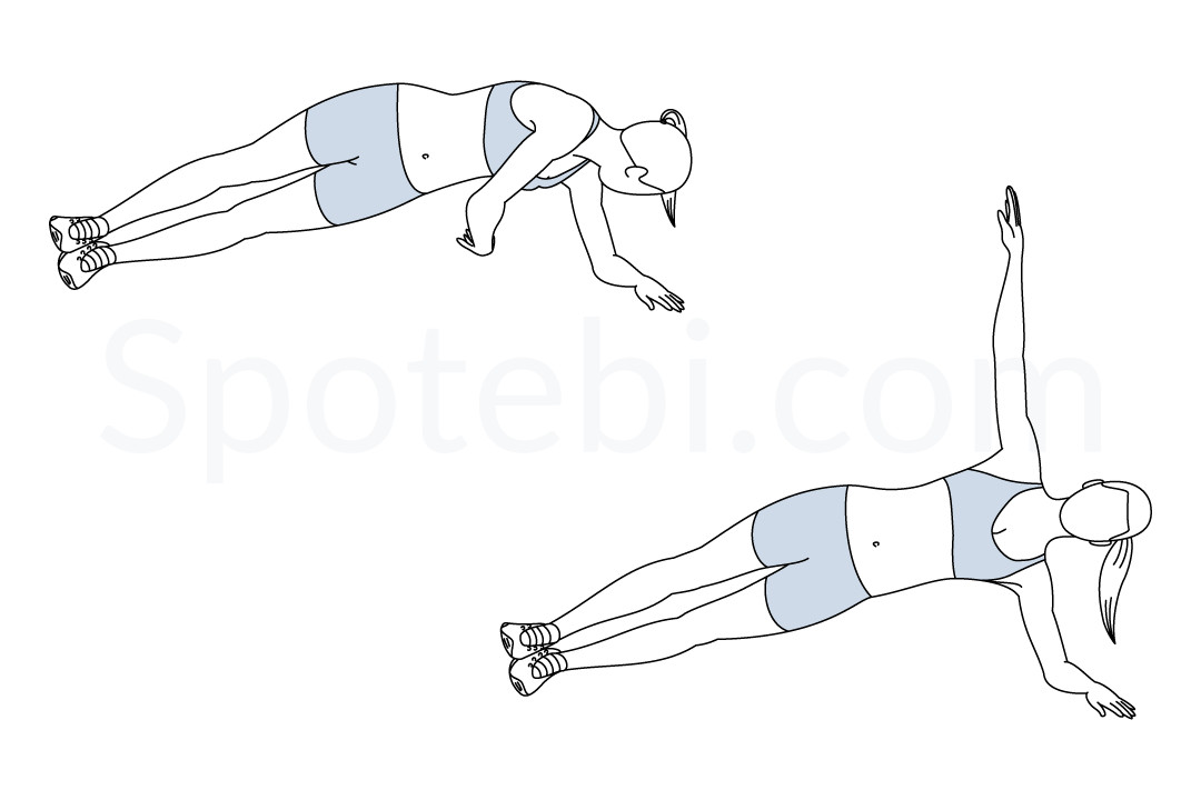 Side plank rotation exercise guide with instructions, demonstration, calories burned and muscles worked. Learn proper form, discover all health benefits and choose a workout. https://www.spotebi.com/exercise-guide/side-plank-rotation/