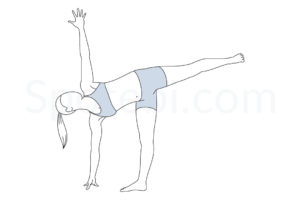 Half moon pose (Ardha Chandrasana) instructions, illustration, and mindfulness practice. Learn about preparatory, complementary and follow-up poses, and discover all health benefits. https://www.spotebi.com/exercise-guide/half-moon-pose/