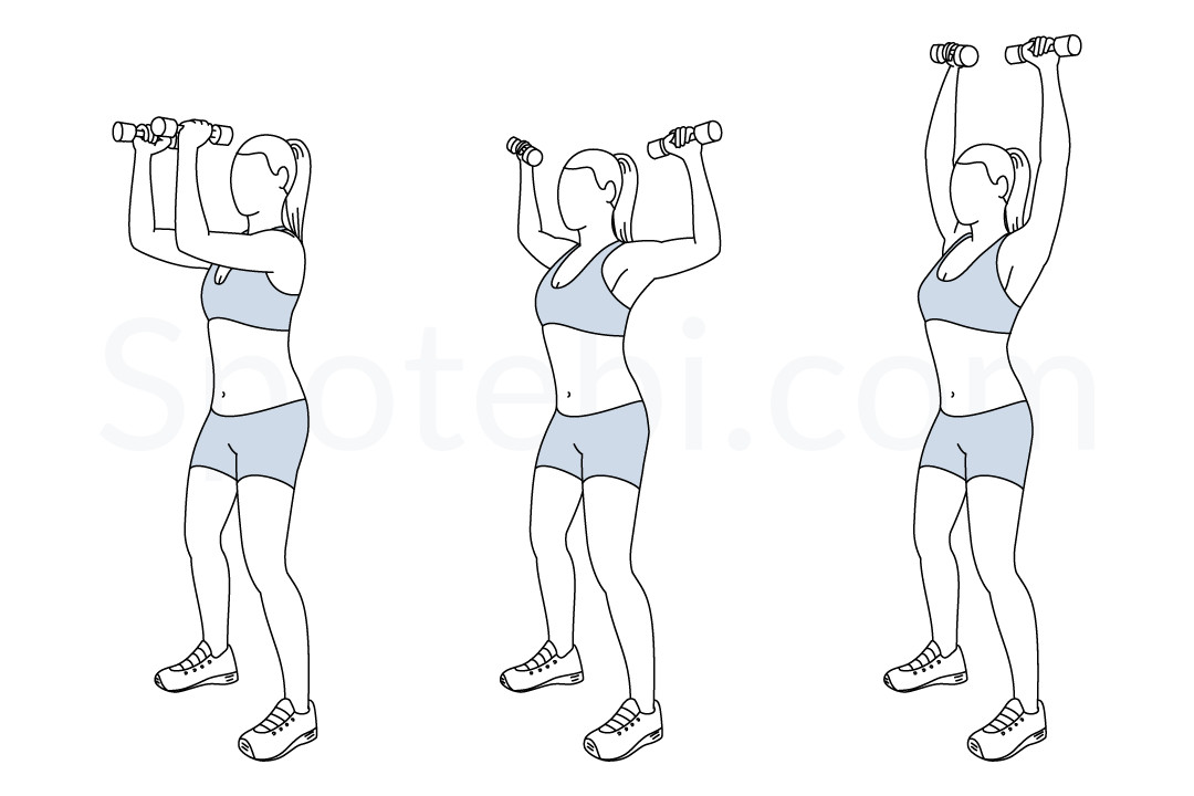 Elbow squeeze shoulder press exercise guide with instructions, demonstration, calories burned and muscles worked. Learn proper form, discover all health benefits and choose a workout. https://www.spotebi.com/exercise-guide/elbow-squeeze-shoulder-press/