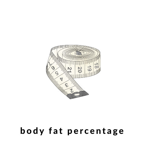 Body Fat Percentage / @spotebi