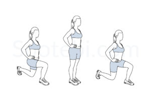 Front and back lunges exercise guide with instructions, demonstration, calories burned and muscles worked. Learn proper form, discover all health benefits and choose a workout. https://www.spotebi.com/exercise-guide/front-and-back-lunges/
