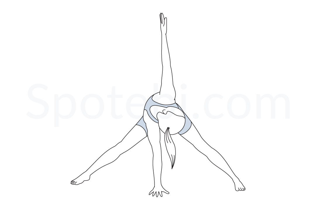 Wide legged forward bend twist pose (Parivrtta Prasarita Padottanasana) instructions, illustration, and mindfulness practice. Learn about preparatory, complementary and follow-up poses, and discover all health benefits. https://www.spotebi.com/exercise-guide/wide-legged-forward-bend-twist-pose/