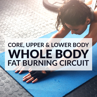 Whole Body Fat Burning Circuit / @spotebi