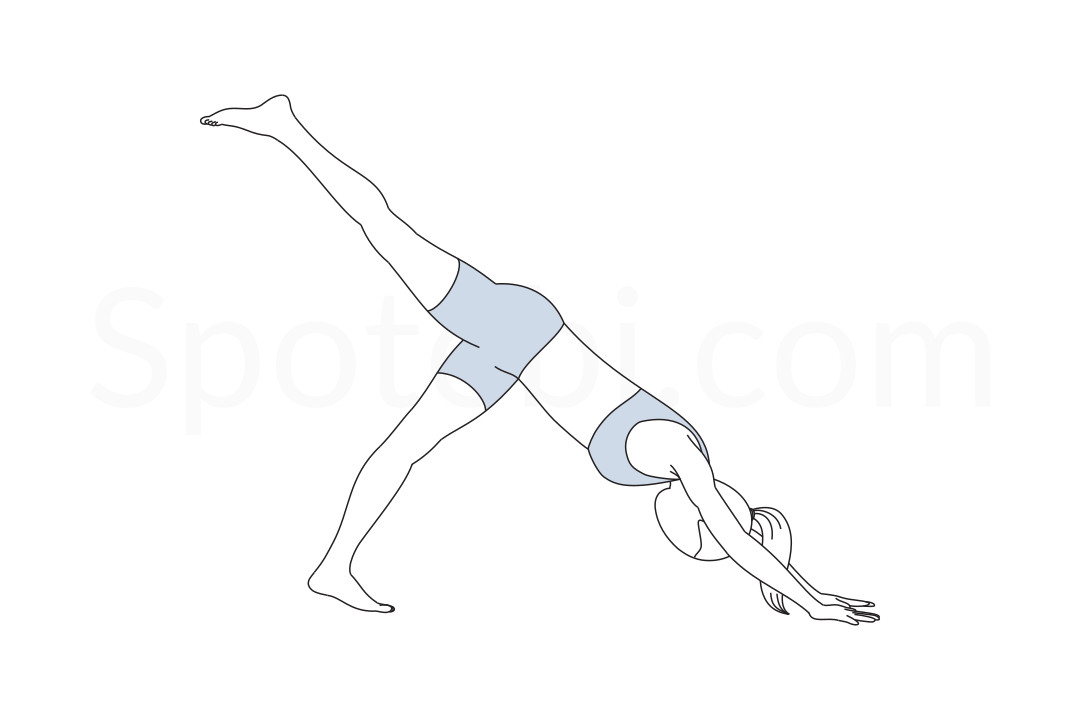 One legged downward dog pose (Eka Pada Adho Mukha Svanasana) instructions, illustration, and mindfulness practice. Learn about preparatory, complementary and follow-up poses, and discover all health benefits. https://www.spotebi.com/exercise-guide/one-legged-downward-dog-pose/