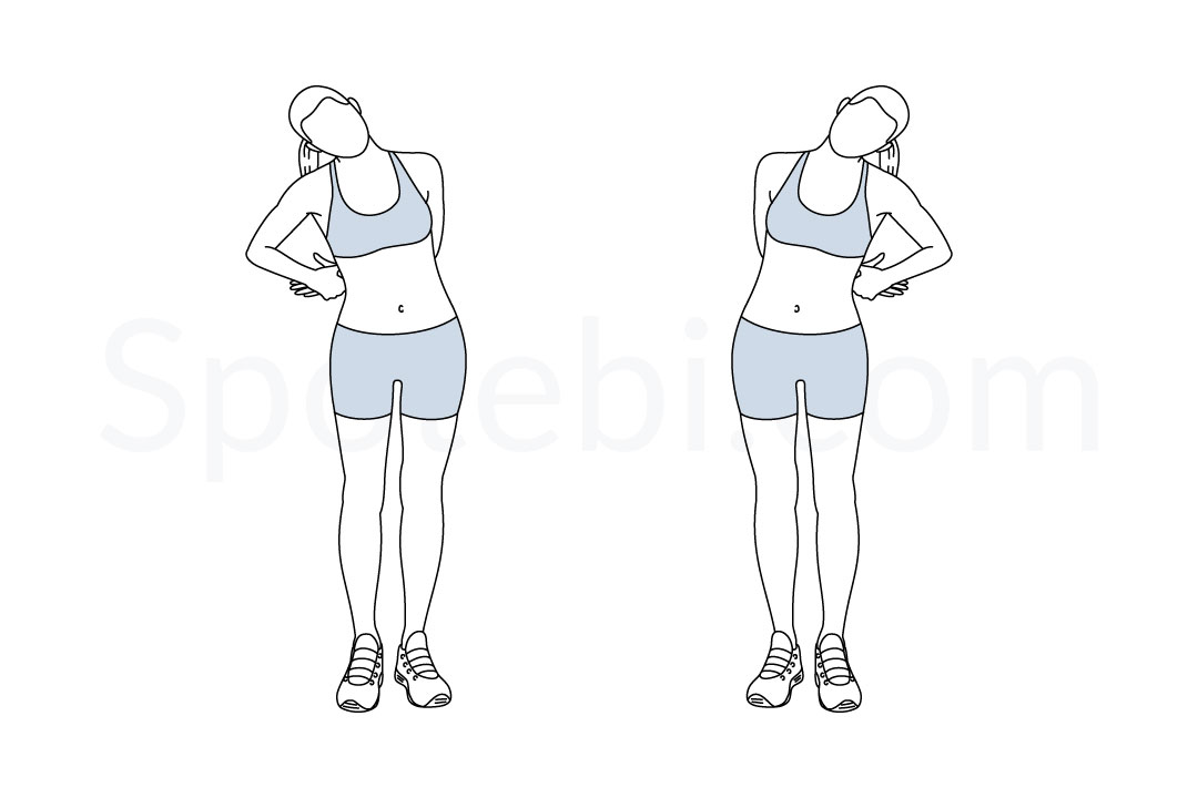Standing neck stretch exercise guide with instructions, demonstration, calories burned and muscles worked. Learn proper form, discover all health benefits and choose a workout. https://www.spotebi.com/exercise-guide/standing-neck-stretch/