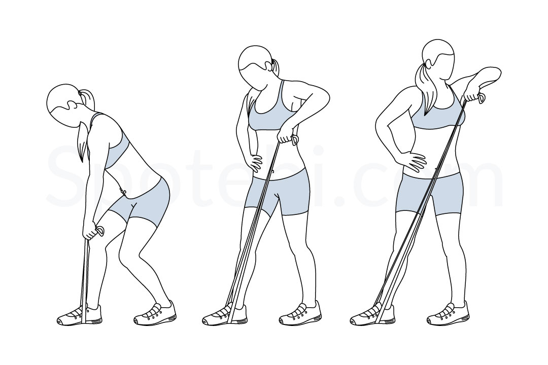 Lawnmower band pull exercise guide with instructions, demonstration, calories burned and muscles worked. Learn proper form, discover all health benefits and choose a workout. https://www.spotebi.com/exercise-guide/lawnmower-band-pull/